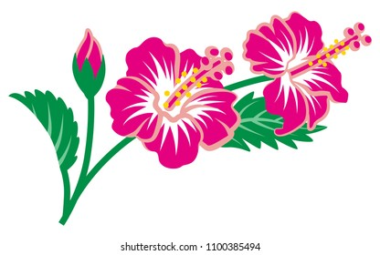 hibiscus clip art images stock photos vectors shutterstock rh shutterstock com hibiscus clipart black and white hibiscus clipart free