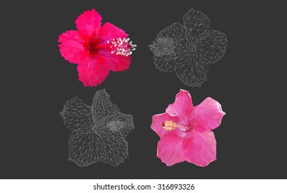 Hibiscus rosa sinensis in geometric polygon style vector in black background