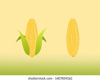 High quality design sweet golden of corn with colorful beauty. vector illustration sign.