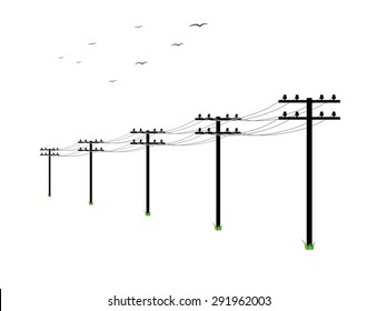 high voltage power lines and birds on white background