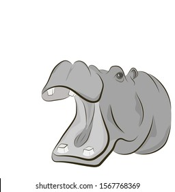 hippo picture. hippopotamus opens his mouth. vector illustration.