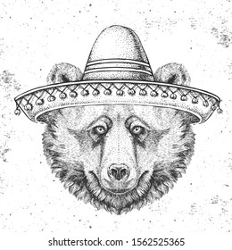Hipster animal bear wearing a sombrero hat. Hand drawing Muzzle of bear