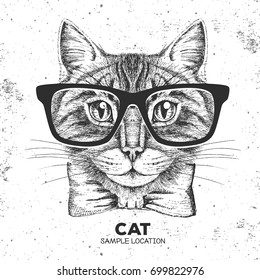 Hipster animal cat. Hand drawing Muzzle of animal cat