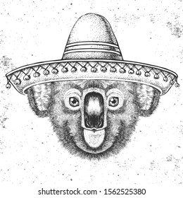 Hipster animal koala wearing a sombrero hat. Hand drawing Muzzle of koala