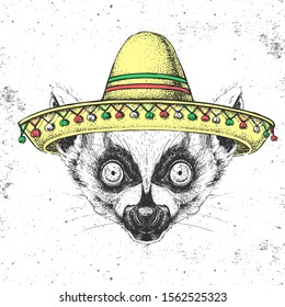 Hipster animal lemur wearing a sombrero hat. Hand drawing Muzzle of lemur