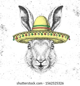 Hipster animal rabbit wearing a sombrero hat. Hand drawing Muzzle of rabbit