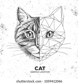 Hipster animal realistic and polygonal cat face. Triangle animal