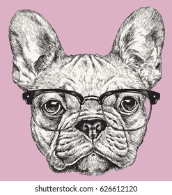Hipster Geek French Bulldog vector illustration