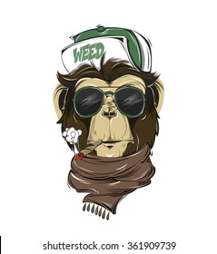 HIPSTER monkey print for t-shirt. Monkey modern street style attributes. Vector art. Monkey head for poster.