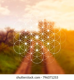 Hipster scientific illustration with flower of life - the interlocking circles ancient symbol in front of blurry photo background