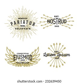 hipster vintage label, logotype, badge for your business or t-shirt print with star burst, lightning, wing, arrow, ribbon