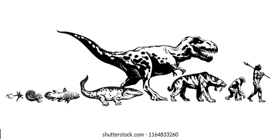 History of life on Earth. Timeline of  evolution from protozoa, prehistoric amphibians to dinosaur, saber toothed tiger, monkey, man. Human development. Hand drawn isolated sketch vector illustration