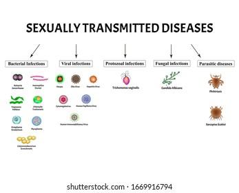 infecciones virales zika