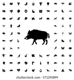 hog icon illustration isolated vector sign symbol