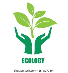 Hold the green seedlings in the hand icon on white background. Caring for the environment. Vector illustration in flat design.