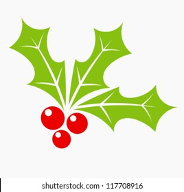 Holly berry - Christmas symbol