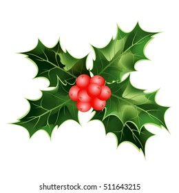 Holly berry. Hand drawn vector illustration of holly twig with berries and leaves isolated on white background for Christmas cards and decorative design.