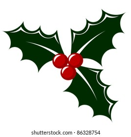 Holly berry icon vector illustration. Symbol of Christmas