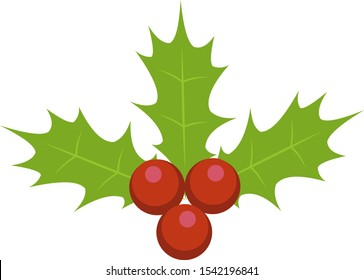 Holly berry leafs vector illustration
