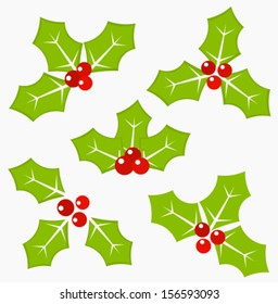 Holly berry leaves and fruits - symbol of Christmas. Vector illustration