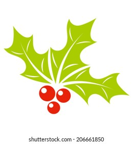 Holly berry plant symbol of Christmas. Vector illustration