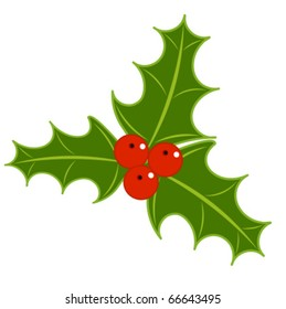 Holly berry symbol of Christmas. vector illustration