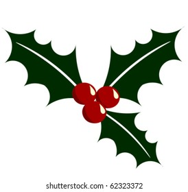 Holly berry vector illustration. Symbol of Christmas