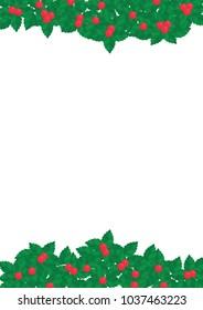 Holly Christmas plant border frame vector.