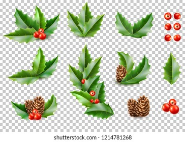 Holly leaves with berries, pine cone realistic set on transparent background. Merry christmas happy new year holidays poster banner invitation card design. Vector ilex, mistletoe and spruce tree con