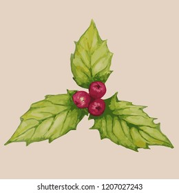 Holly leaves in watercolor. Vector illustration