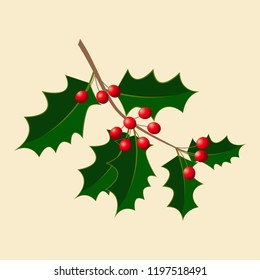 Holly. Vector illustration. Branch with berries. New Year, Christmas Traditional symbol