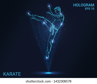Hologram of karate. Holographic projection of a karate a jump. Flickering energy flux of particles. Scientific sports design.