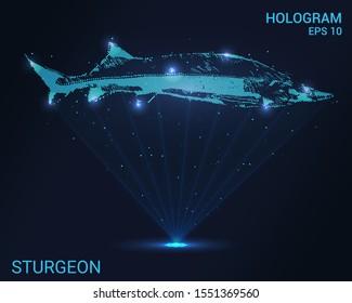 Hologram sturgeon. The rays of light create a hologram of sturgeon. Sturgeon of particles and dots. Vector illustration.