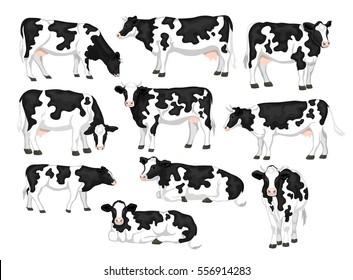 Prostituierte aus Reinfeld (Holstein)