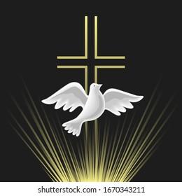 Holy Spirit icon. Hand drawn style. Christian holiday Pentecost Trinity Sunday concept. Church sacrament biblical symbol of flying spiritual dove. Pentecostal greeting. Vector religious illustration