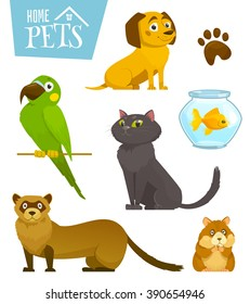 Home pets set isolated on white, cat dog parrot goldfish hamster ferret, cartoon vector illustration, domesticated animals