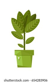 Home plant in pot isolated icon. Plants indoor room, houseplant, floral interior decoration design element vector illustration.