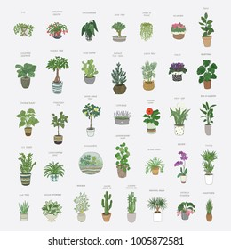 home plants cartoon hand drawn illustrations set