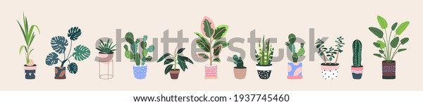 Home plants in flowerpot. Houseplants isolated. Trendy hugge style, urban jungle decor. Hand drawn. Set collection. Green, blue, pink, brown, beige pastel colors. Print, poster, banner. Logo, label.