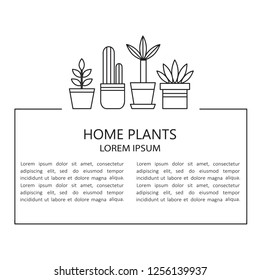 Home plants and place for your text here. Hand drawn backdrop. Black and white wallpaper vector. Decorative illustration, good for printing. Potted plants, background. Simple blank