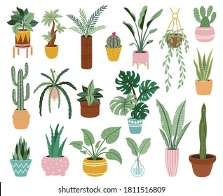 Home potted plants. Houseplants in plant pots, flower potted plant, green leaves interior decoration isolated vector illustration icons set. Ceramic containers and vase with aloe, cactus