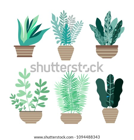 Tropical office plants Foliage Home Room And Office Plants In Pots Cactus And Tropical Leaves Cute Vector Elements Yifanzhanginfo Home Room Office Plants Pots Cactus Stock Vector royalty Free