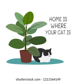 Home is where your cat is. Cat, homeplant and text. Vector illustration.