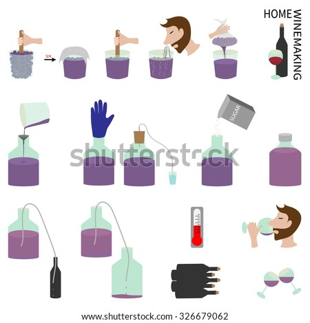 Home Wine Making Wine Grapes Step Stock Vector Royalty Free