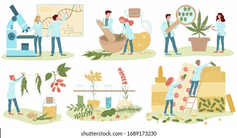 Homeopathy and natural alternative medicine, herbal medical treatment and homeopaths medics set of flat isolated on white vector illustrations. Homeopathic oils production, healing herbs treatment.