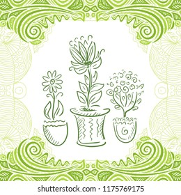 Homeplants. Vector illustration