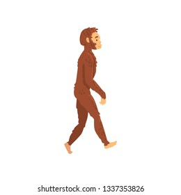 Homo Erectus, Biology Human Evolution Stage, Evolutionary Process Vector Illustration