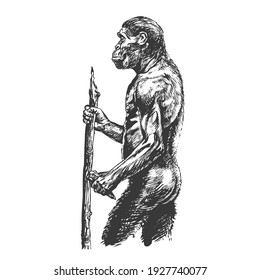 Homo erectus. View from the side. Hand drawing sketch