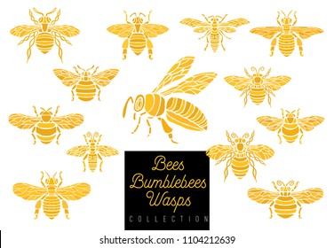 Honey bee bumblebees wasps set sketch style collection insert wings emblem symbols Hand drawn vector engraving illustration