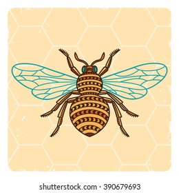 Honey Bee. Hand drawn honey bee